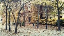 The etrance to Narnia...Zahrady Gardens