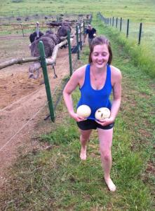 I'm even safe while these ostriches plot to kill me....but I did steal their eggs, so fair enough!
