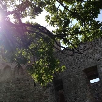 Cēsis Castle, Latvia