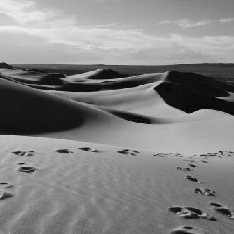Footsteps in the sand dunes at Khongoryn Els